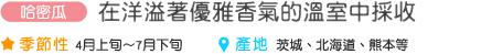 枇杷 在洋溢著優雅香氣的溫室中採收 季節性 4月上旬~7月下旬 產地 茨城、北海道、熊本等