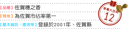 草莓大百科12 品種 佐賀穗之香 特徴 為佐賀市佔率第一 基本情報 産地等 登錄於2001年、佐賀縣